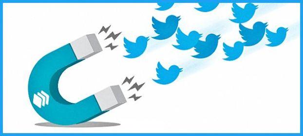 conseguir-seguidores-twitter